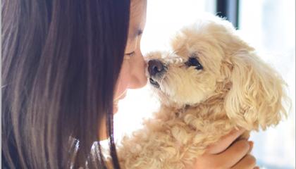 副作用がない動物に優しいオゾン療法