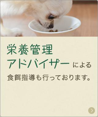 栄養管理アドバイザーによる食事指導も行っております。